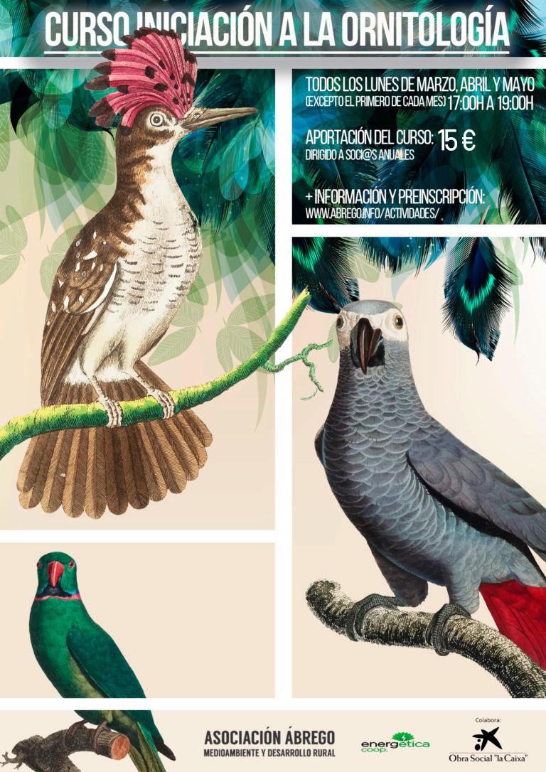 cartel-ornitologia-burgos
