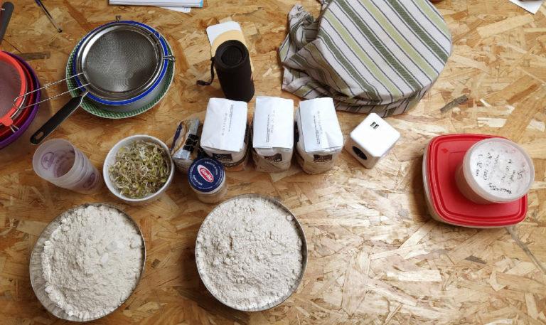 elaboracion de pan con masa madre asociacion abrego burgos